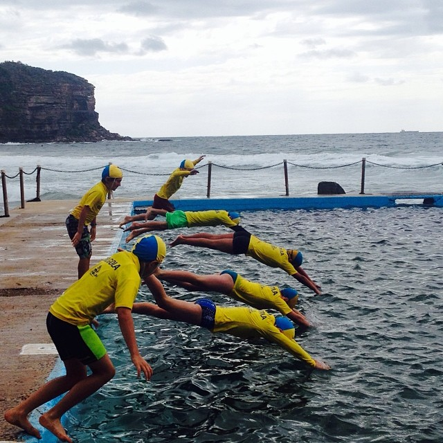 Bilgola SLSC Nippers Swimming